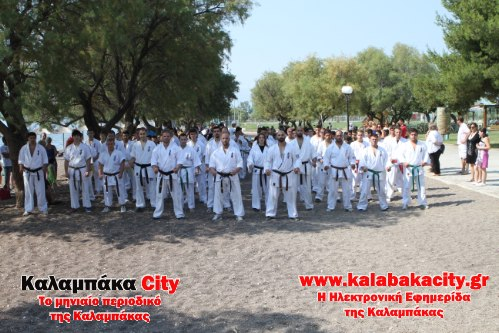 karate IMG 2191