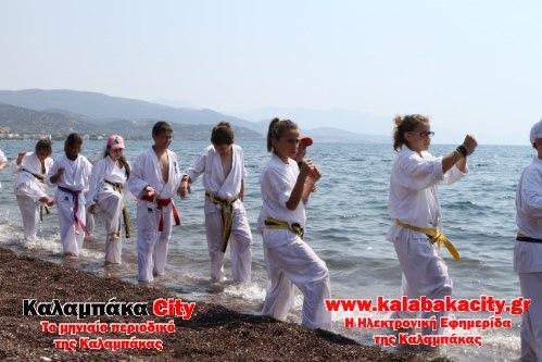 karate IMG 2486
