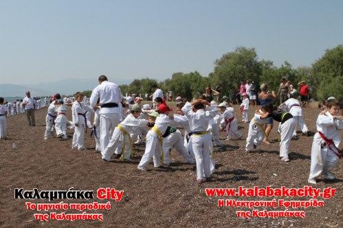 karate IMG 2542